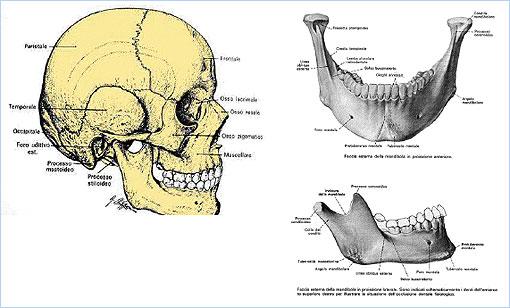 Rieducazione Temporo-mandibolare